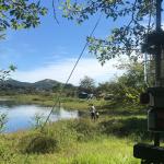 山中湖 / みさきキャンプ場